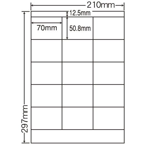 東洋印刷 ラベルシール nana カラーインクジェット用光沢 A4 80シート SCJ-13