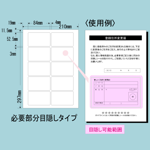 東洋印刷 目隠しラベル nana 必要部分目隠しタイプ A4 250シート PCL-35