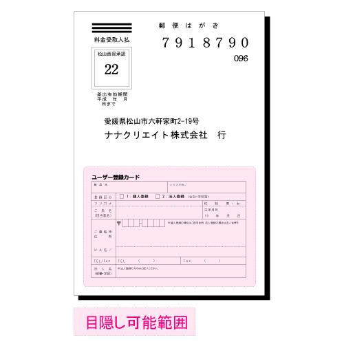 東洋印刷 目隠しラベル nana ハガキ半面タイプ A4 250シート PCL-2