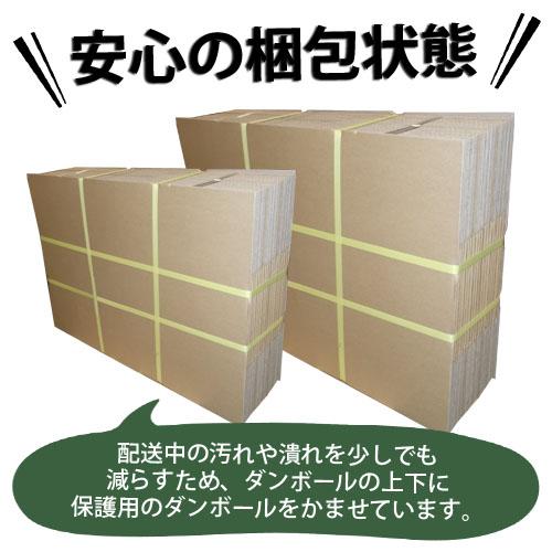 ダンボール GRATES 国産 無地ダンボール Lサイズ(120サイズ対応) 10枚セット