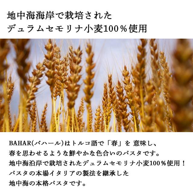 バハール ショートパスタ ペンネ (デュラム小麦100%) 500g