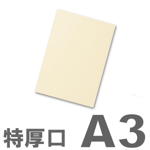 大王製紙 カラーコピー用紙 再生色上質紙(国産紙) 特厚口 A3 クリーム(イエロー) 250枚:
