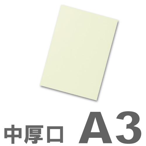 大王製紙 カラーコピー用紙 再生色上質紙(国産紙) 中厚口 A3 うぐいす 500枚: