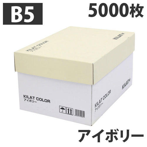 【送料無料】GRATES カラーコピー用紙 B5 アイボリー 5000枚【他商品と同時購入不可】: