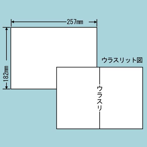 東洋印刷 ラベルシール nana 再剥離タイプ B5 100シート×10 C1B5F: