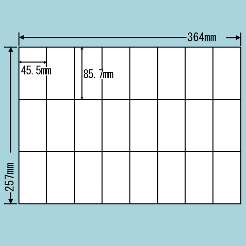 東洋印刷 ラベルシール nana 汎用タイプ B4 500シート E24U: