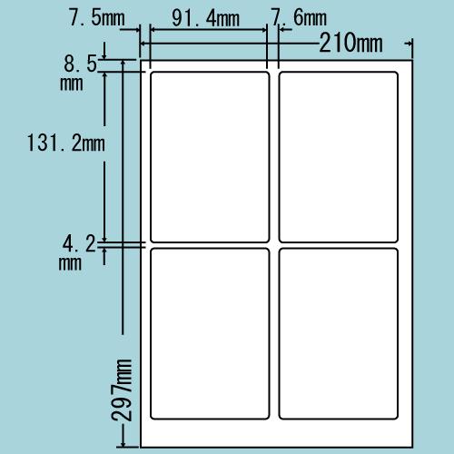 東洋印刷 レーザープリンタ用ラベル nana 光沢紙 A4 80シート入 SCL-1: