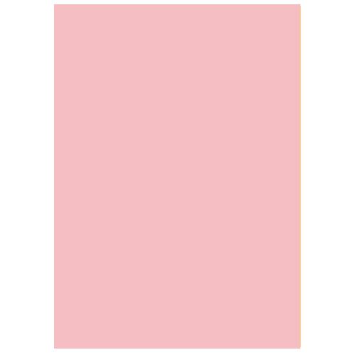 北越製紙 オフィス用紙 カラーR100 A4 ピンク 500枚×5冊