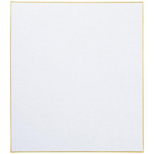 色紙 画仙用 10枚 N102J-G