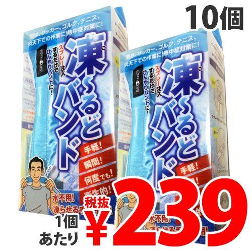イイダ産業 凍~るどバンド 冷却スプレー付 10本セット