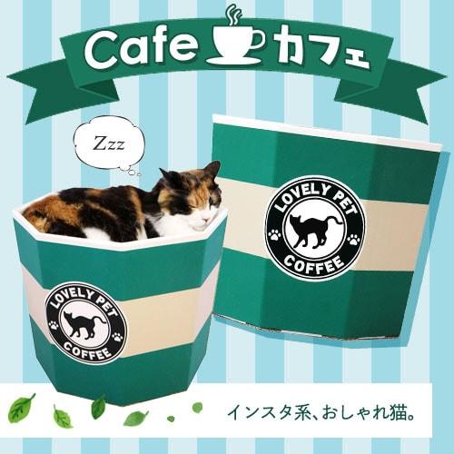 猫カップ ダンボール カフェ