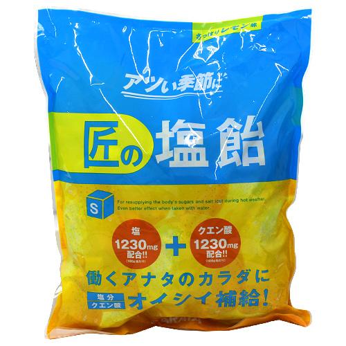 【売切れ御免】【賞味期限:21.03.16以降】サラヤ Gains 匠の塩飴 レモン味 750g