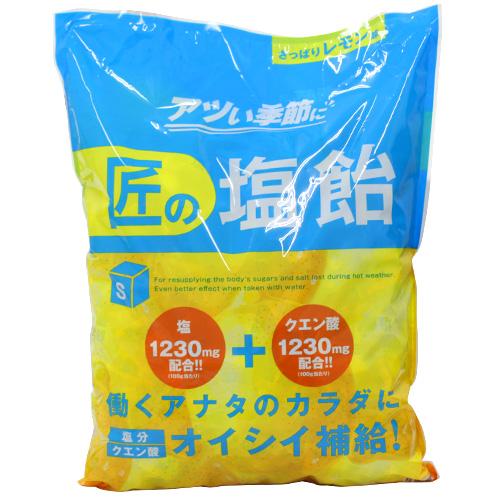 【売切れ御免】【賞味期限:21.04.06以降】サラヤ Gains 匠の塩飴 レモン味 2kg