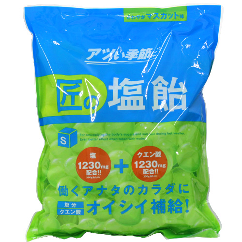 【売切れ御免】【賞味期限:21.03.02以降】サラヤ Gains 匠の塩飴 マスカット味 750g