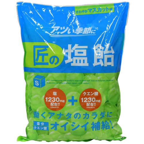 【売切れ御免】【賞味期限:21.04.08以降】サラヤ Gains 匠の塩飴 マスカット味 2kg