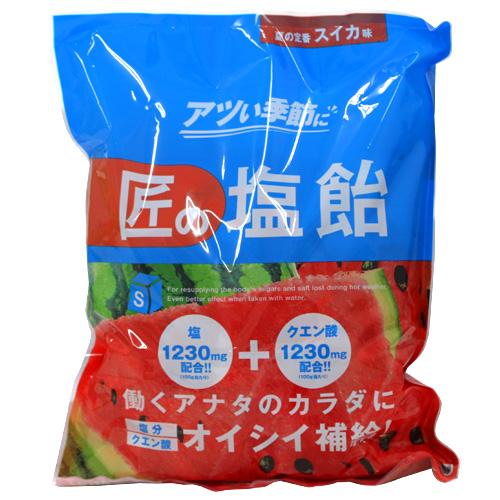 【売切れ御免】【賞味期限:21.07.02】サラヤ Gains 匠の塩飴 スイカ味 750g