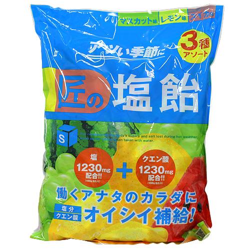 【売切れ御免】【賞味期限:21.06.25以降】サラヤ Gains 匠の塩飴 マスカット・レモン・スイカ味 2kg