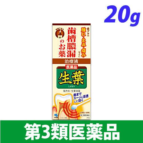 【第3類医薬品】小林製薬 生葉 液薬 20g