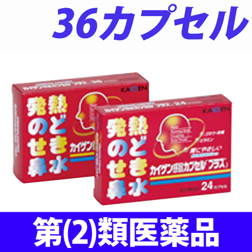 【第(2)類医薬品】カイゲンファーマ カイゲン 感冒カプセル「プラス」 36cap