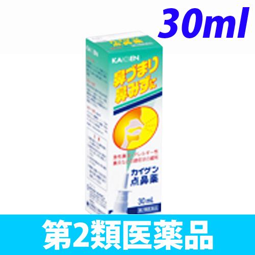 【第2類医薬品】カイゲンファーマ カイゲン 点鼻薬 30ml