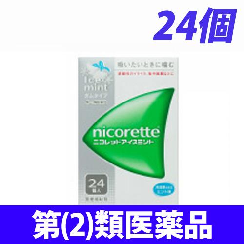 【第(2)類医薬品】武田薬品工業 ニコレット アイスミント 24個