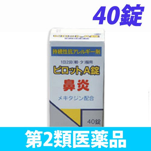 【第2類医薬品】全薬工業 ピロット A錠 40錠