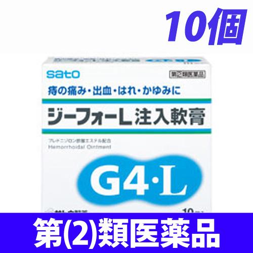 【第(2)類医薬品】佐藤製薬 ジーフォーL(G4L) 注入軟膏 10個入