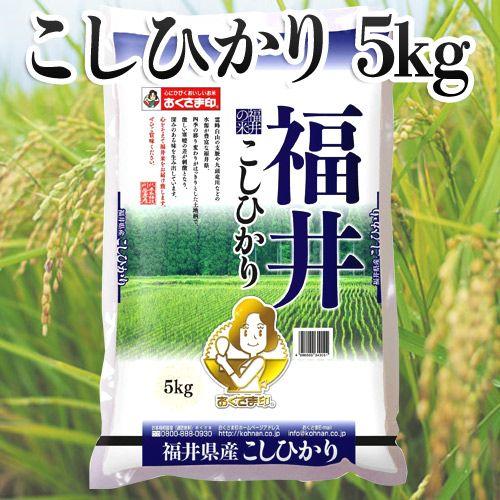 幸南食糧 おくさま印 福井県産こしひかり 5kg