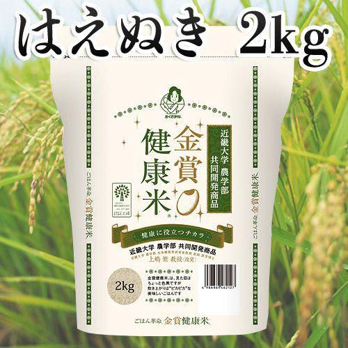 幸南食糧 おくさま印 金賞健康米 山形県はえぬき 2kg