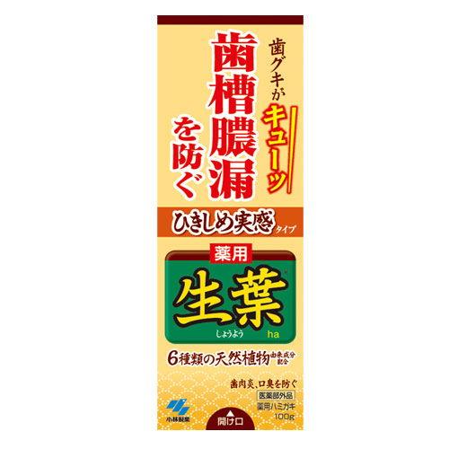 小林製薬 歯磨き粉 ひきしめ生葉 100g 【医薬部外品】