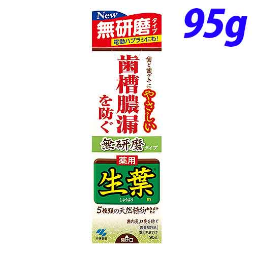 小林製薬 歯磨き粉 生葉 無研磨タイプ 95g【医薬部外品】