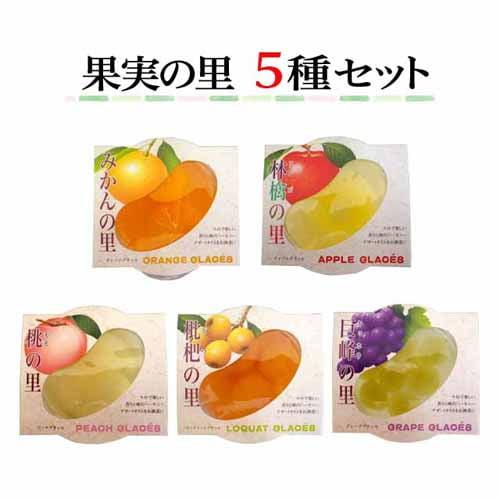 ジュポンかづの 果実の里 5種セット