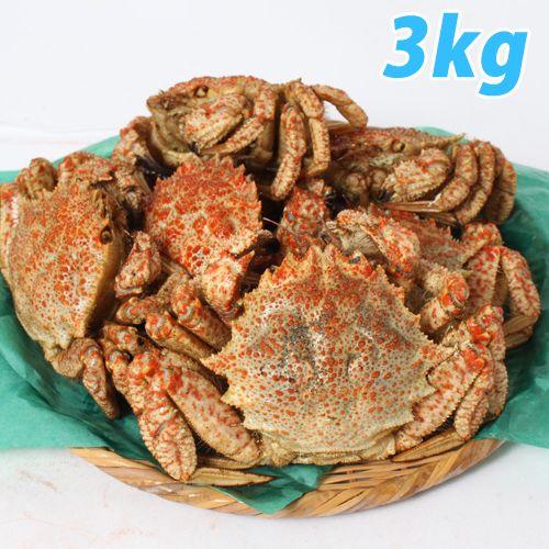 青森むつ湾 とげくり蟹 3kg(10~13杯前後)