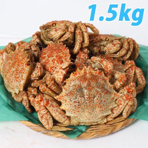 青森むつ湾 とげくり蟹 1.5kg(7杯前後)