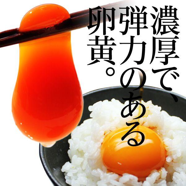 デイリーエッグ 赤穂の源×36個 通のたまかけ醤油×3本