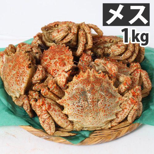 【今季販売終了】青森むつ湾 とげくり蟹【メス】 1kg(6~8杯)【代引不可】【送料無料(一部地域除く)】