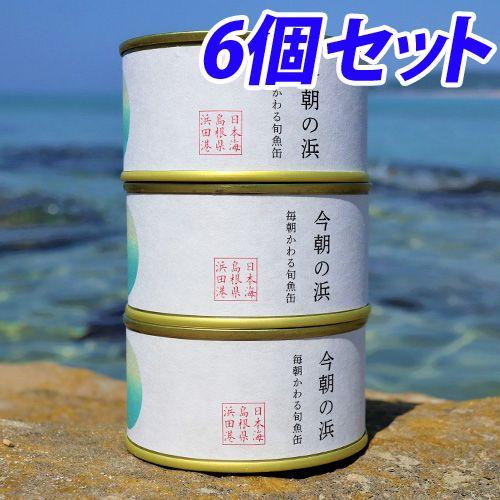 【送料無料】シーライフ 今朝の浜 【魚種おまかせ】 3缶 2セット