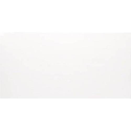 アイリスオーヤマ 養生シート プラダン 1820×910×4 ホワイト 5枚 PD1894W
